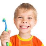 dental insurance florida